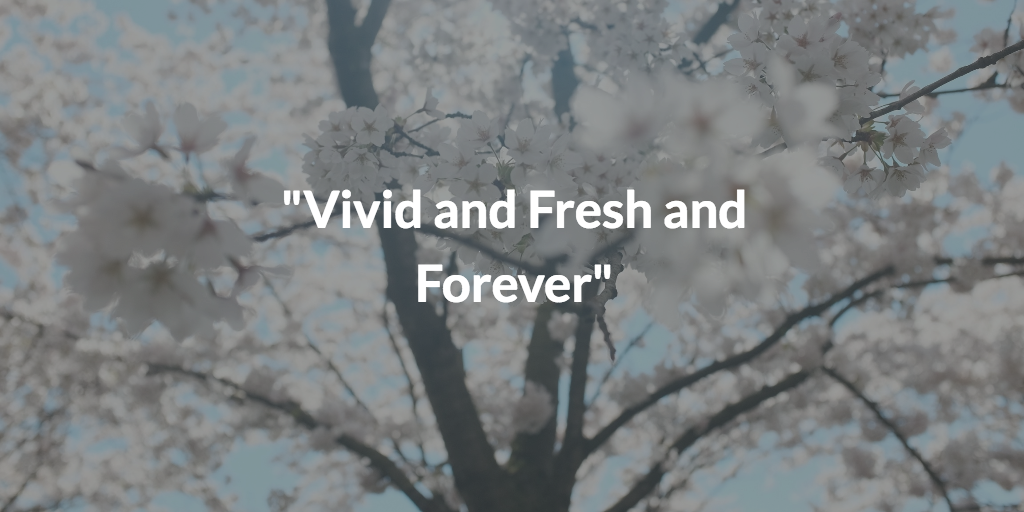 vivid and fresh and forever
