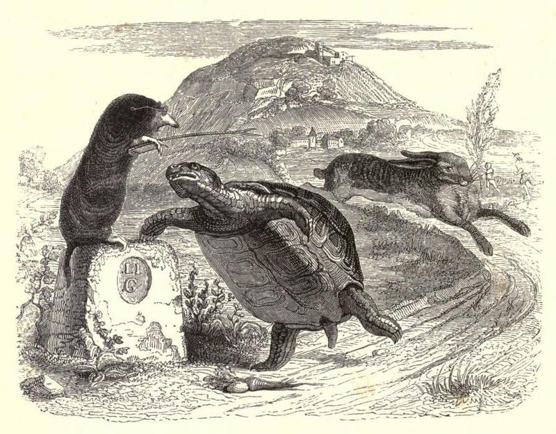 A 19th-century illustration of La Fontaine's Fables by Jean Grandville