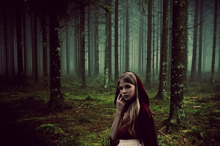 The Wolf and the Woods: Adding Fairy Tales to Your Content Creation