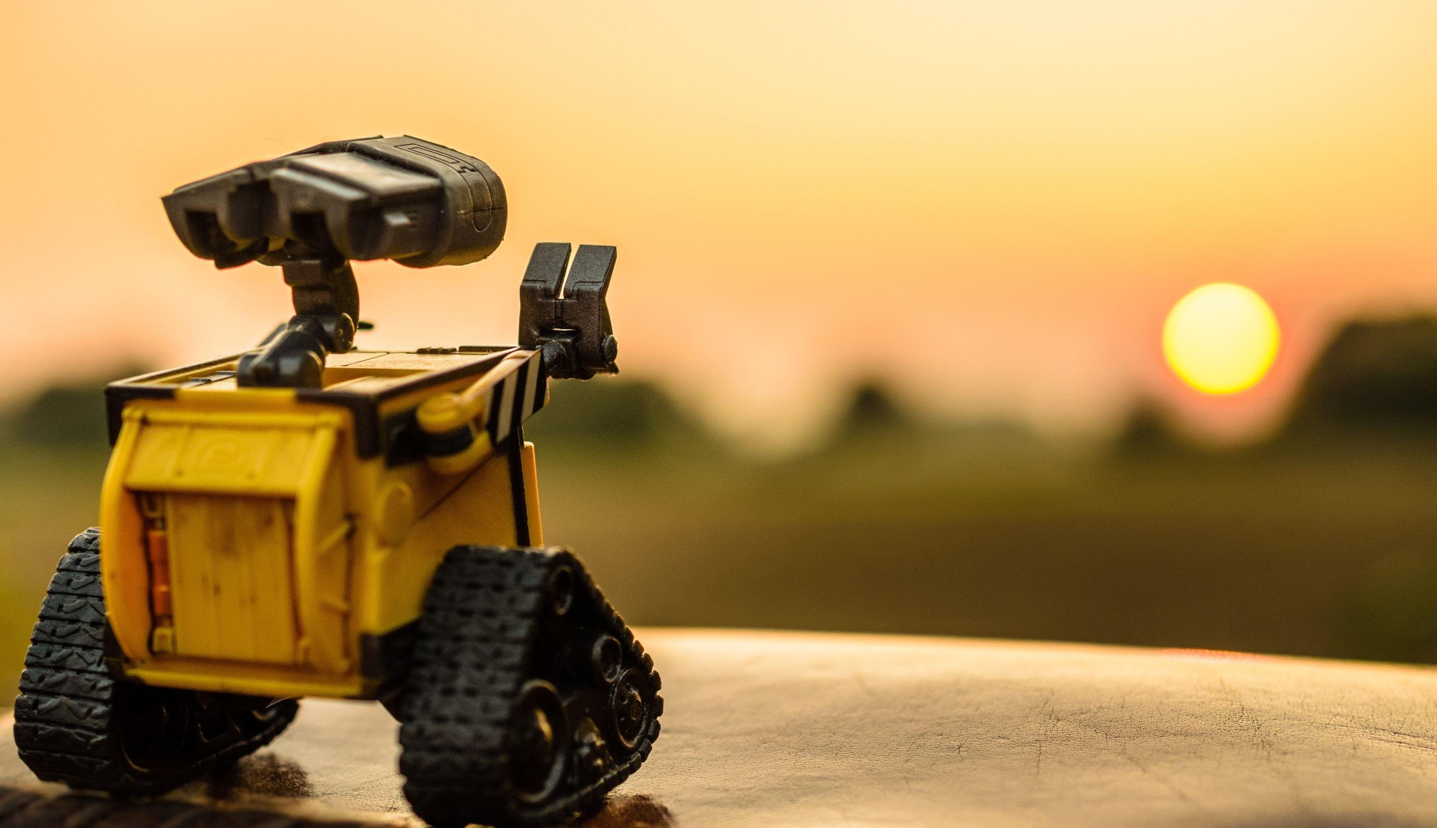 Robot staring at sunset