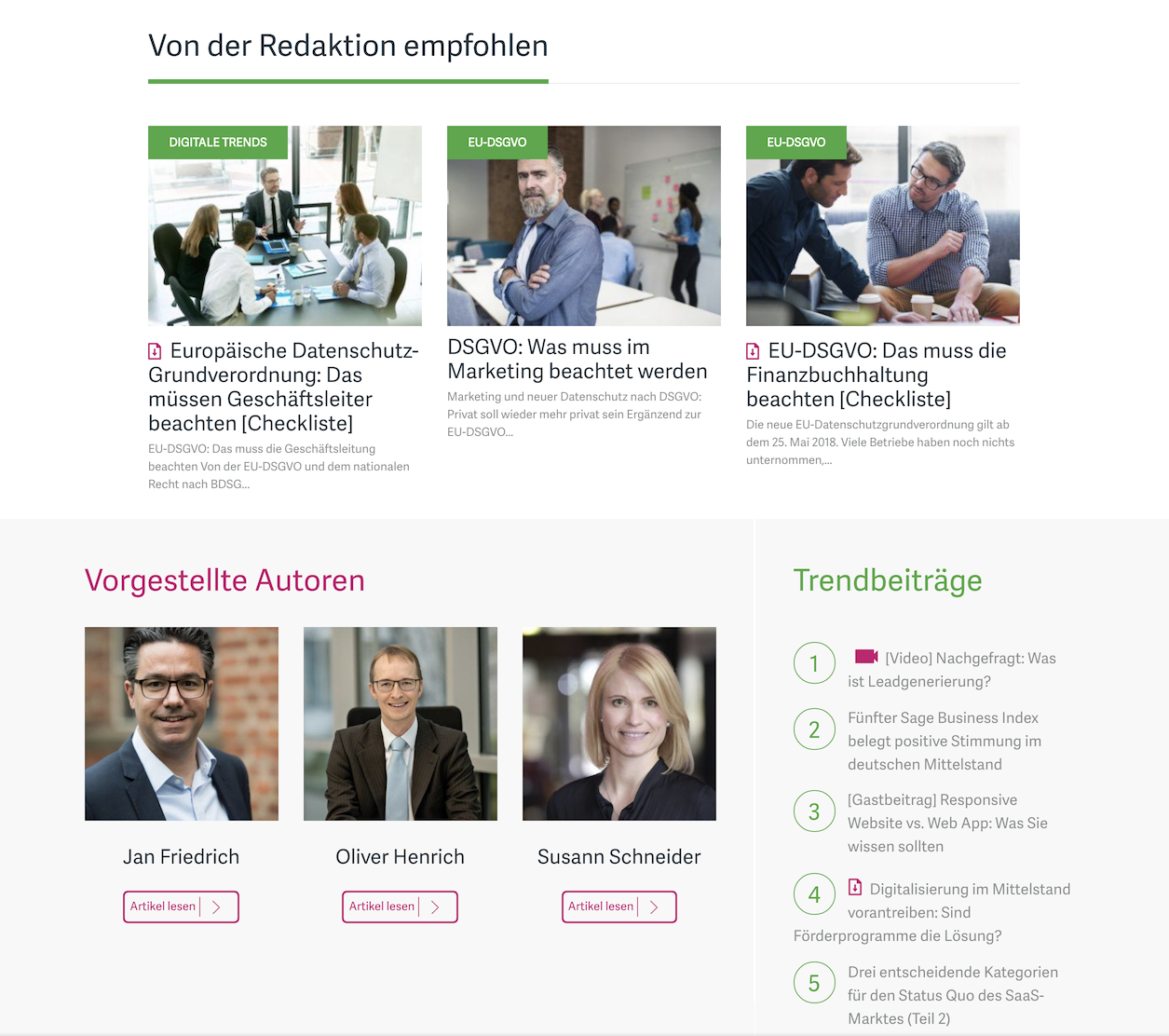 Sage Advice Germany home page
