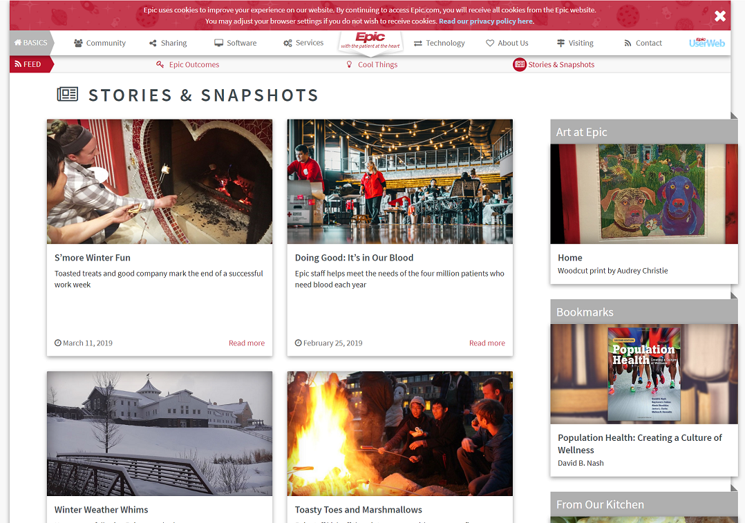 Screenshot of Epic blog