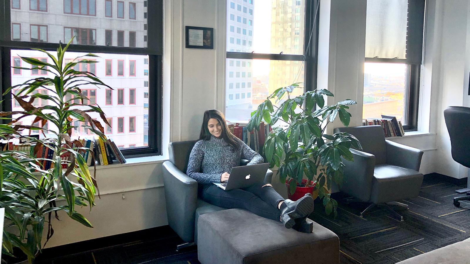 Boston-Office_Plants