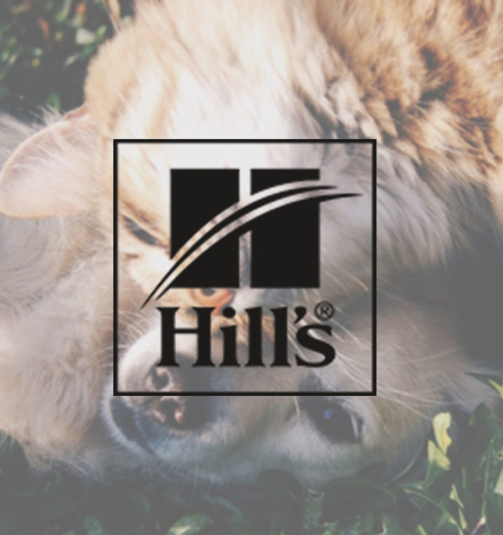 How Hill's Pet Nutrition Outranked the Competition with SEO