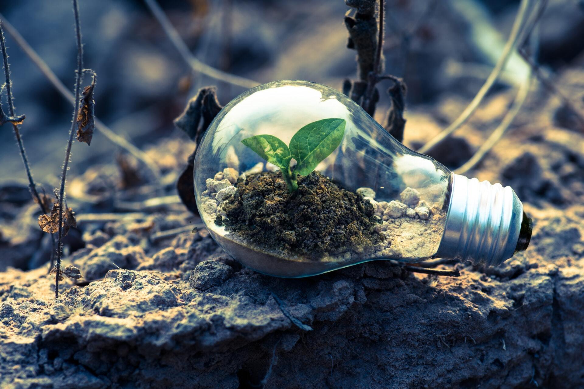 10 Fresh Content Repurposing Strategies to Multiply Your ROI